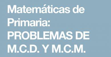 profesor-de-matematicas - matematicas generales 390x200