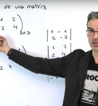 profesor-de-matematicas - profesor 333x360
