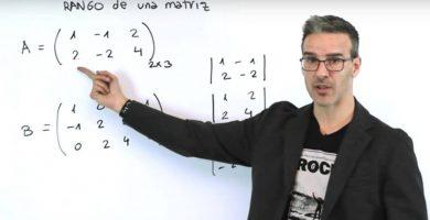 profesor-de-matematicas - profesor 390x200